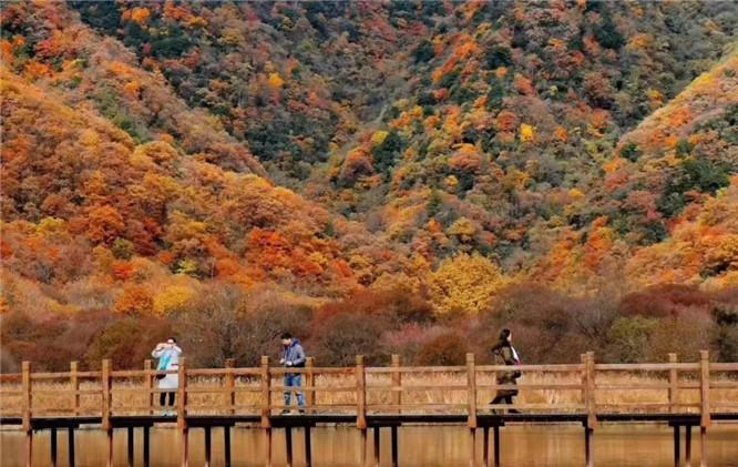 11月神农架好玩吗,风景图片,11月神农架冷吗